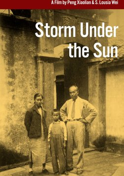 Storm Under the Sun - The Persecution of a Writer Fighting for Artistic Freedom